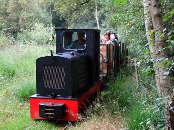 Kurbahn - Fahrten ins Moorgelände Bad Bramstedt